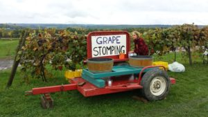 Grape Harvest Tour @ Eastview Mall | Victor | New York | United States