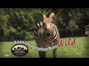 Hidden Valley Animal Adventure - Cancelled @ Terry Hills Golf | Batavia | New York | United States